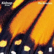 Kidnap - Grow (The Remixes) - Reviews - Album of The Year